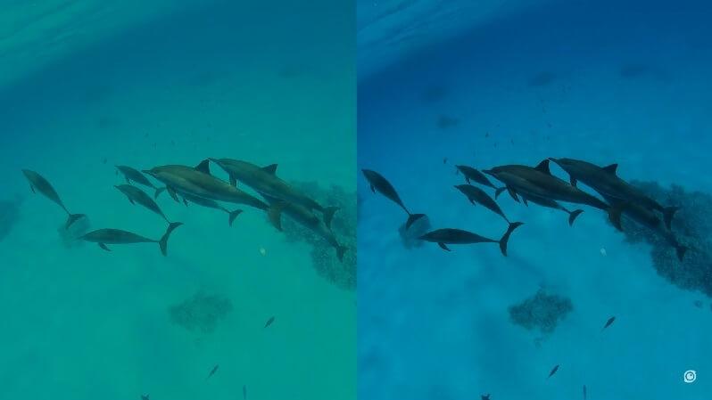 水中視覺 (Aquavision)