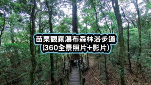 苗栗觀霧瀑布森林浴步道